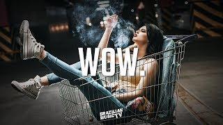 Post Malone - Wow. (TJ PA5CON Remix)