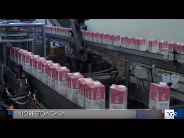 Gruppo Grifo AgroAlimentare non si ferma servizio TGR Rai Umbria