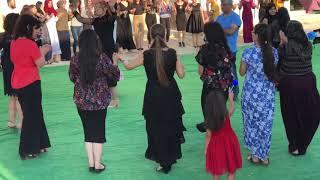 Konya Cihanbeyli Sosyete Kürt Düğünü Adar Arjin 2018