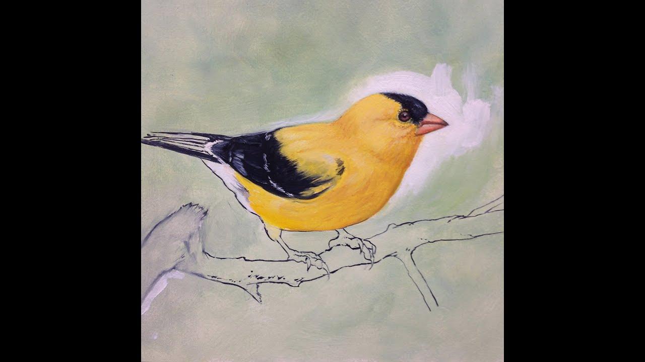 Easy Acrylic Paintings Of Birds
