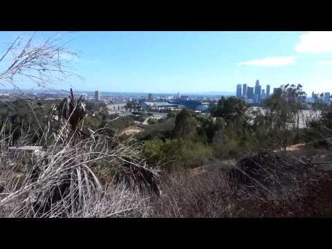 Elysian Park -- Los Angeles