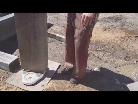 making  curved white oak knee braces
