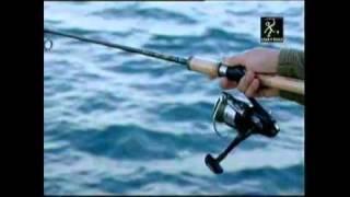Pesca Sepia en Valencia