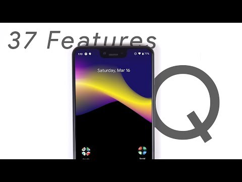 Android Q - Everything Explained!