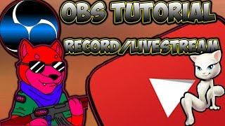 Open Broadcaster Software/OBS (Tutorial, YouTube Channel Tips)