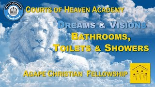 Dreams & Visions: Toilets, Showers & Bathrooms