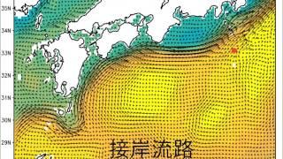 2016年の流速と海面高度