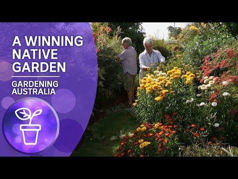A Prize-winning Native Garden
