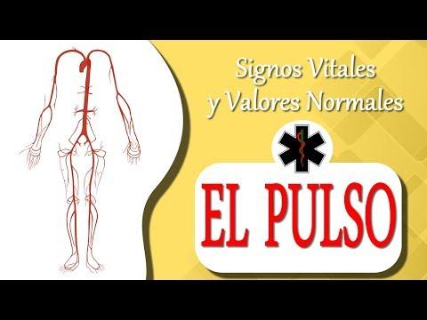 Signos Vitales El pulso #signosvitales