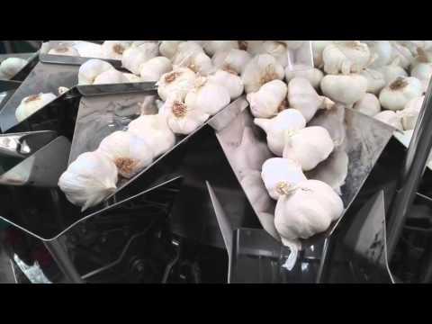 Envasado de ajos en malla tubular con 4 unidades
