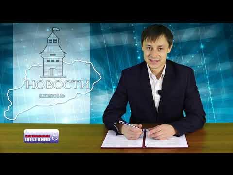 """ТРК """"Шебекино"""" Выпуск 321 26.11.2019г."""