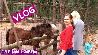 Ольга Матвей. VLOG: Где Мы Живем + Поход на Ферму