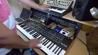 Moog Sub Phatty+DSI Prophet Rev 2