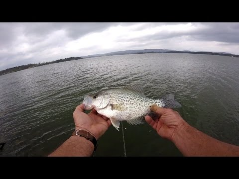 Crappie fishing from the bank lake guntersville youtube for How to fish for crappie from the bank