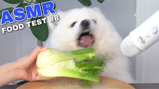 ASMR Dog Reviewing Different Types of Food #8 I MAYASMR