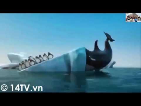 Tập tính di cư của động vật _ Nhóm 3 - 11A3 - NTN