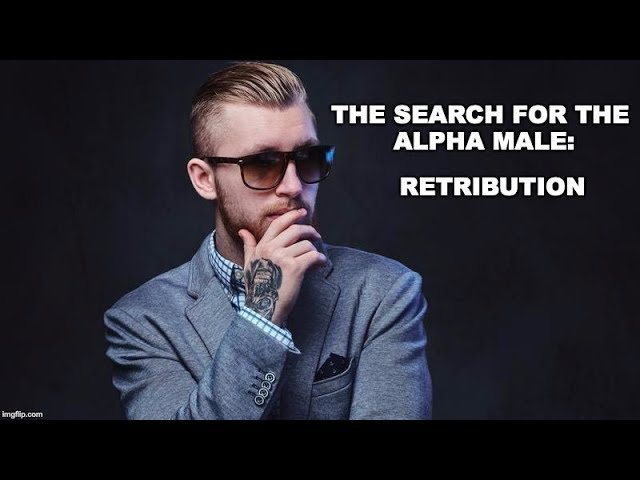The Search For The Alpha Male 4: Retribution
