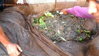 Amazing Big Fish Catching Skill। Net Fishing On The River