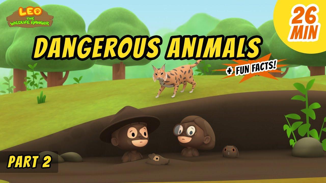 Dangerous Animals (Part 2/2) - Animals Stories for Kids | Educational | Leo the Wildlife Ranger