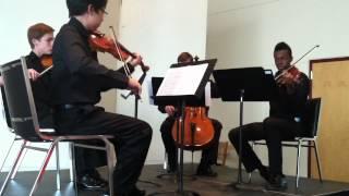 Lumina String Quartet 322