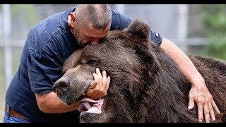 крутой боевик премьера 2018 Кликуха Медведь