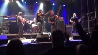 Iron Maiden Tribute - Back in the Fields Rock Festival - 2014 - the Trooper