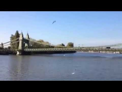 Hammersmith Bridge looking majestic