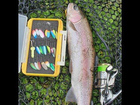 Area Trout,  Glenkeen Trout Fishery