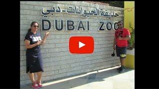 Dubai Zoo | 2016
