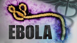 #Ebola #virus #disease #Hemorrhagic #Fever