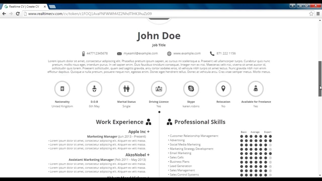 How to Make Infographic CV | Realtime CV Online Tool - YouTube
