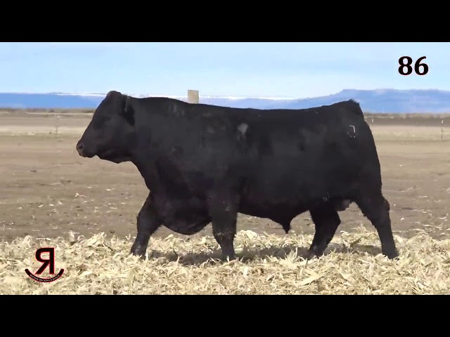 Reverse Rocking R Ranch Lot 86