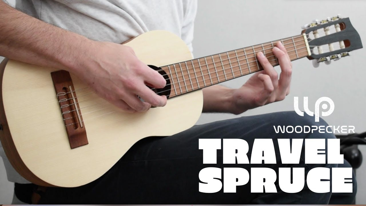 Nirvana Songs - Woodpecker Travel Guitar -  How does it sounds?