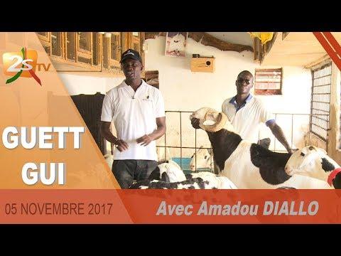 GUET GUI DU 05 NOVEMBRE 2017 AVEC AMADOU DIALLO