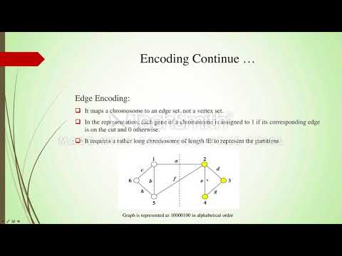 Survey Presentation: Genetic Approaches for Graph Partitioning
