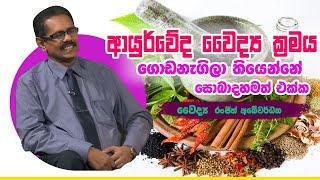 ආයුර්වේද වෛද්ය ක්රමය ගොඩනැගිලා තියෙන්නේ සොබාදහමත් එක්ක | Piyum Vila | 12-09-2019 | Siyatha TV Thumbnail
