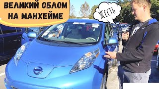 Как я не купил Ниссан Лиф Nissan leaf 2013 года. Большой облом на аукционе Манхейм Флорида