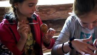 FORESTCLUB Детский лагерь в Киевской области на childcamp.com.ua