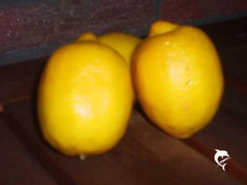 Warum Die Zitronen Sauer Wurden Gelesen Von Karsten Eckert