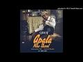 Qdot - Apala New Skool