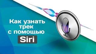 Фішка Siri - Що може Siri в IOS 11 - Приховані новинки Siri - Як користуватися Siri