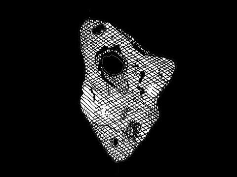 Trailer - Ness (Robert Macfarlane & Stanley Donwood)