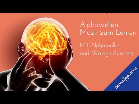 Lernmusik –  Musik zum Lernen, Lesen und Konzentration –  mit Alphafrequenz ♫06 |  Mp3 Download