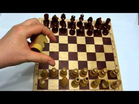 Как научиться играть в шахматы для начинающих с картинками