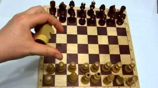 Шахматы для начинающих / Часть1