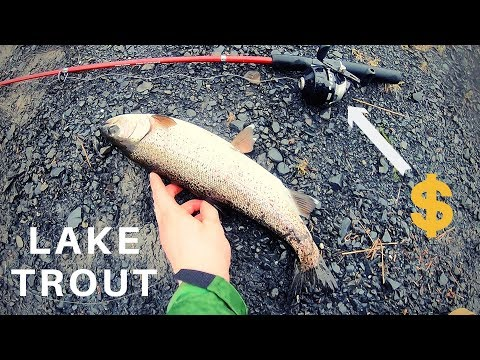 STRUGGLE Is Real: Rainbow Trout On Zebco 404 Spincast Reel
