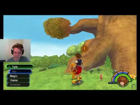 AscomanniLP Kingdom Hearts 1.5 Episode 19: Yo! Screw These Bees Man!