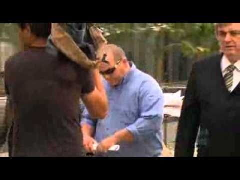 Violence erupts at Perth District Court
