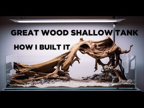 Great Wood Shallow Aquarium - Aquascaping Tutorial