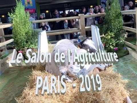 Salon International Agriculture Paris 2019 Youtube
